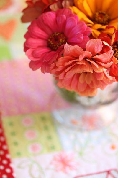 IMG_8667_2333 blog