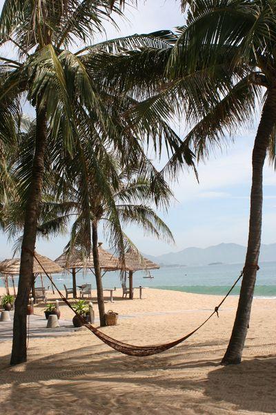 April 2008 Vietnam C1 P2056 blog