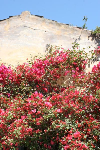 Rome_athens_may_2007366