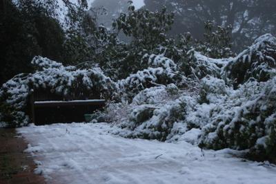 Snow_18th_july_2007010_2