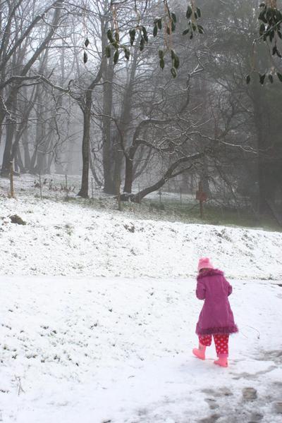 Snow_18th_july_2007037