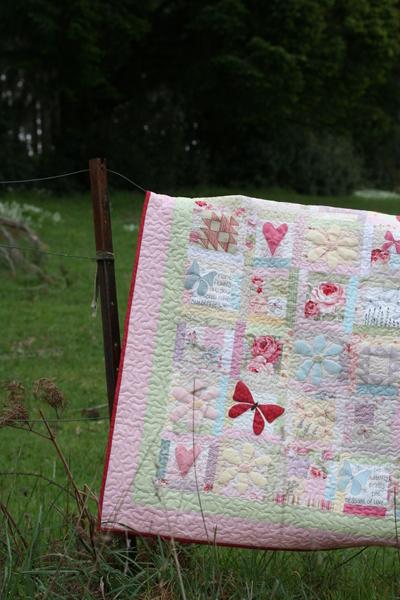 Butterfly_garden_oct_12_2007043