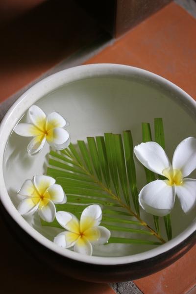 April_2008_vietnam_c1_p1104