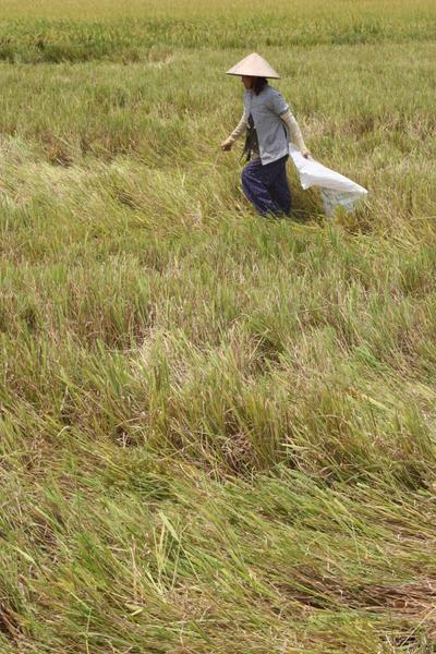 April_2008_vietnam_c1_p2155
